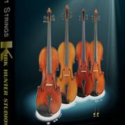 Spotlight-Strings